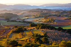 Jornades del paisatge de la Conca de Barberà