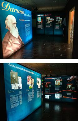 Exposició 'Darwin i l'Evolució'