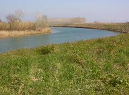 El riu Fluvià al seu pas per Sant Pere Pescador. Font: web de l'ajuntament