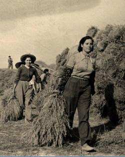 Exposició '1937. Quan la ribera no tenia amo. Crònica de la Col·lectivitat General d'Amposta'