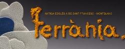 Terrània, Festival Internacional de Ceràmica