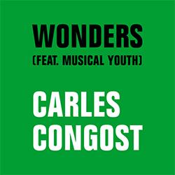 Exposició 'Wonders', de Carles Congost
