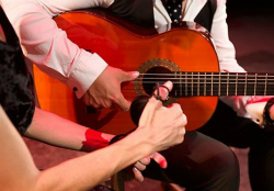 Espectacle 'Guitarra y flamenco'