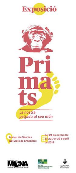 Exposició 'Primats. La nostra petjada al seu món'