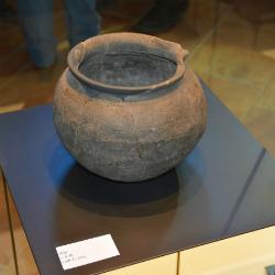 'Els vermuts nòrdics dels romans'. Visita guiada al Jaciment Arqueològic del Castellot