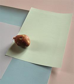 Exposició 'Material sensible', de Blanca Casas Brullet