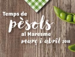 Temps de pèsol al Maresme, jornades gastronòmiques 2018