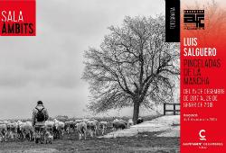 Exposició 'Pinceladas de la Mancha', de Luis Salguero