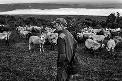 Exposició 'A la intempèrie: la vida dels darrers pastors del Montseny'