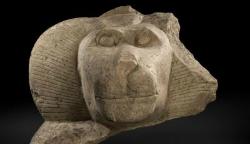 Exposició 'Animals sagrats de l'Antic Egipte'