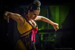 """Espectacle """"Rafaela"""".  Font: web de Cultura de Banyoles"""