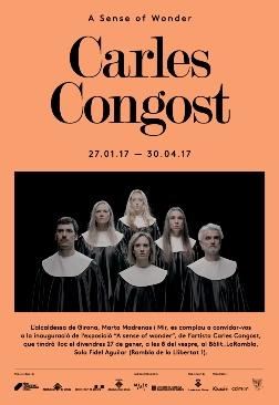 Exposició 'A sense of wonder', de Carles Congost