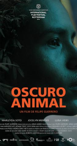 """Projecció de la pel·lícula """"Oscuro animal"""", de Felipe Guerrero (2016). Font: imdb.com"""