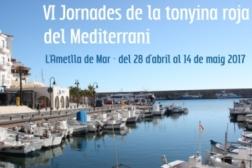 Jornades de la tonyina roja del Mediterrani i ruta de la tapa roja