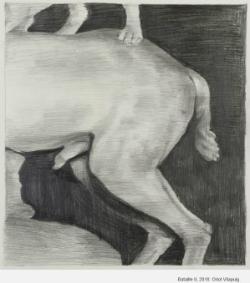 Exposició 'La nit sexual', d'Oriol Vilapuig