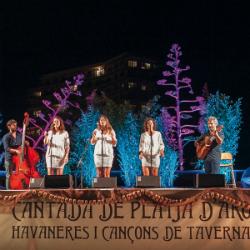 XXXV Cantada d'havaneres i cançons de taverna de Platja d'Aro. Font: estereofonics.com