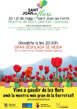 """Mostra """"Sant Joan les Flors 2017. Font: web de l'Ajuntament"""