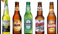 """Conferència """"La màgia de la cervesa"""". Font: Amics de la Casa Màgica"""