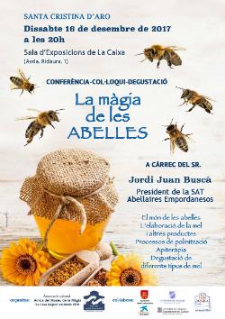 """Conferència """"La màgia de les abelles"""". Font: l'organització"""