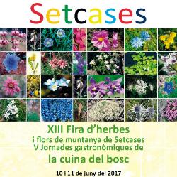 XIII Fira d'herbes i flors d'alta muntanya de Setcases
